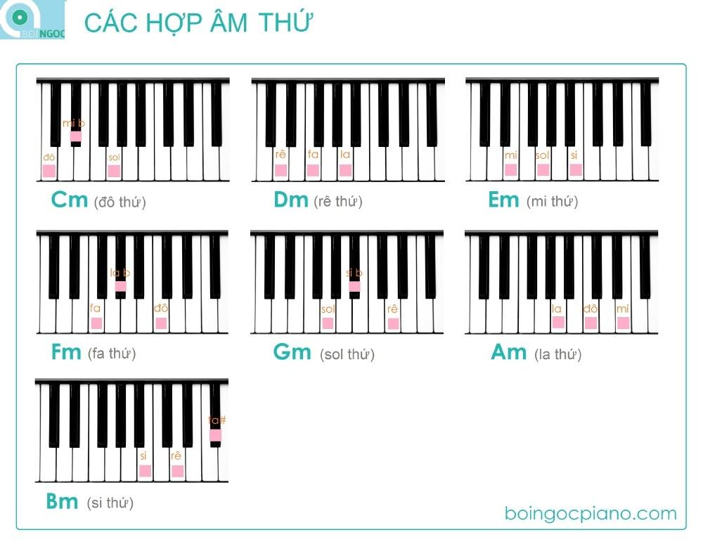 14 hợp âm cơ bản và đủ dùng trên piano - Boi Ngoc Piano Official