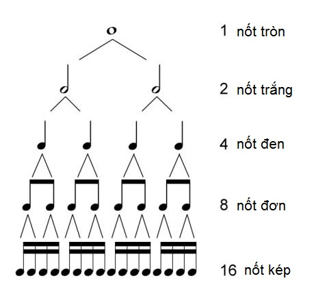 rhythm_tree_1