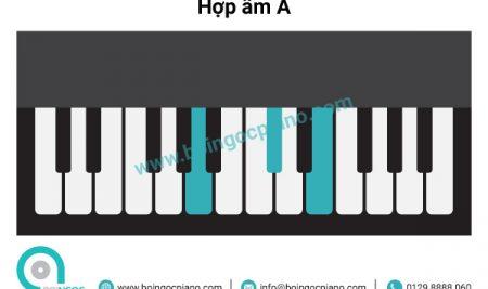 6 hợp âm cơ bản thường dùng khi đệm hát giọng A – F#m (La trưởng –  Fa thăng thứ)