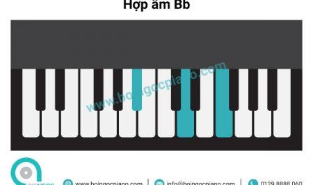 6 hợp âm cơ bản thường dùng khi đệm hát giọng Bb– Gm (Si giáng trưởng –  Sol thứ)