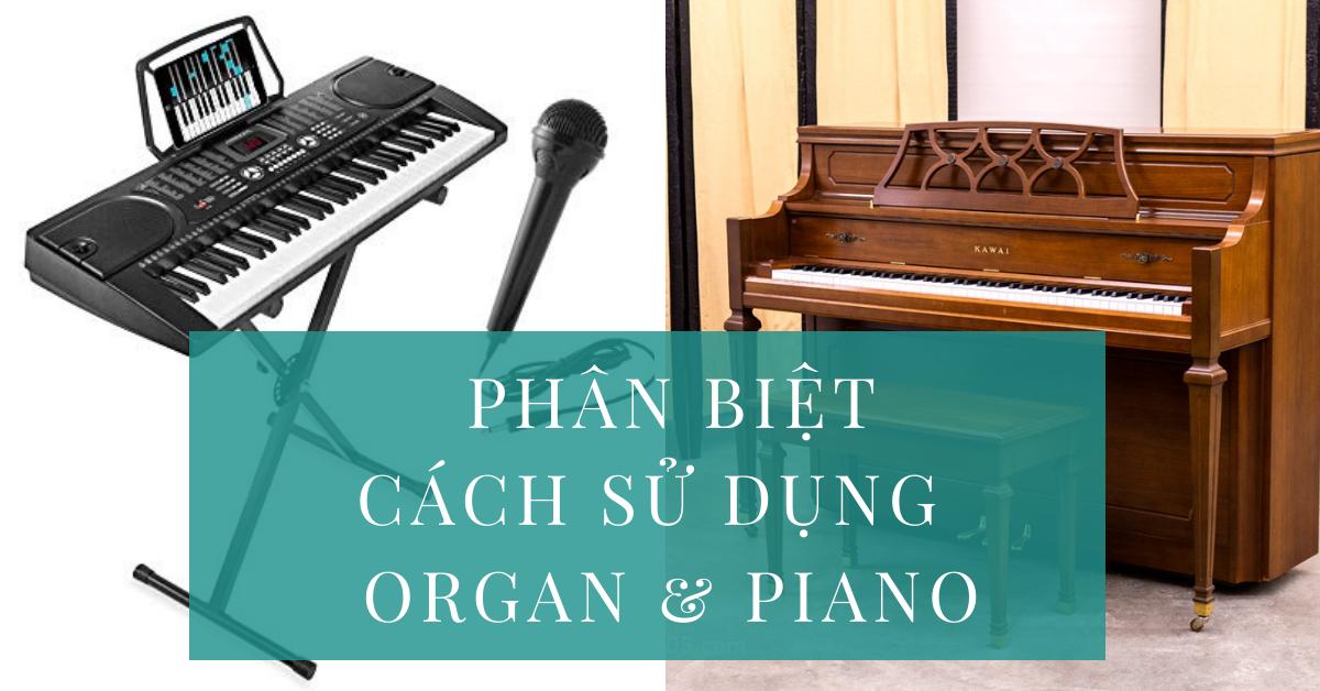 phân biệt học organ và học piano